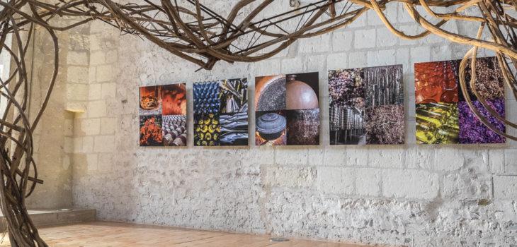 Photographies Jean-Yves Bardin, Exposition Chemin de Vignes Chemins de Vie avec Jean-Yves Bardin photographe et Serge Crampon plasticien à la Collégiale Saint-Martin à Angers